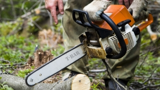 Aus/The Safe Operation of Chainsaws Aus